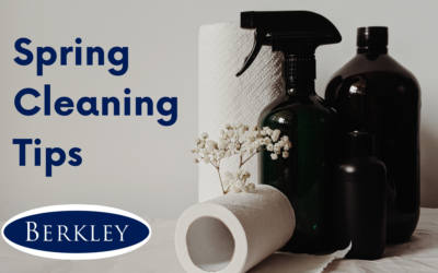 Berkley's Best Spring Cleaning Tips This Easter